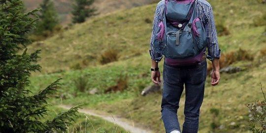 Wanderer in Harburger Bergen